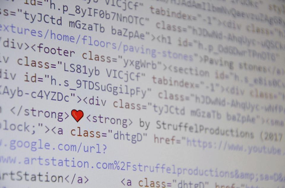 programování webu